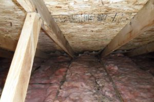 Attic Mold Removal Finished